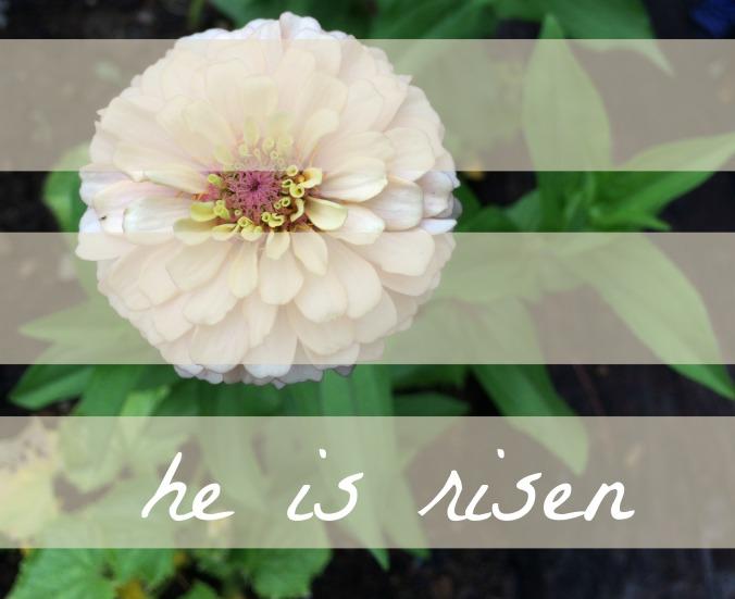 heisrisen5